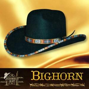 #11 Bighorn Custom Hat