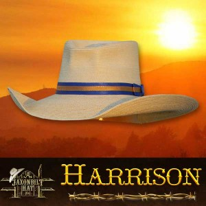 Harrison Straw Hat